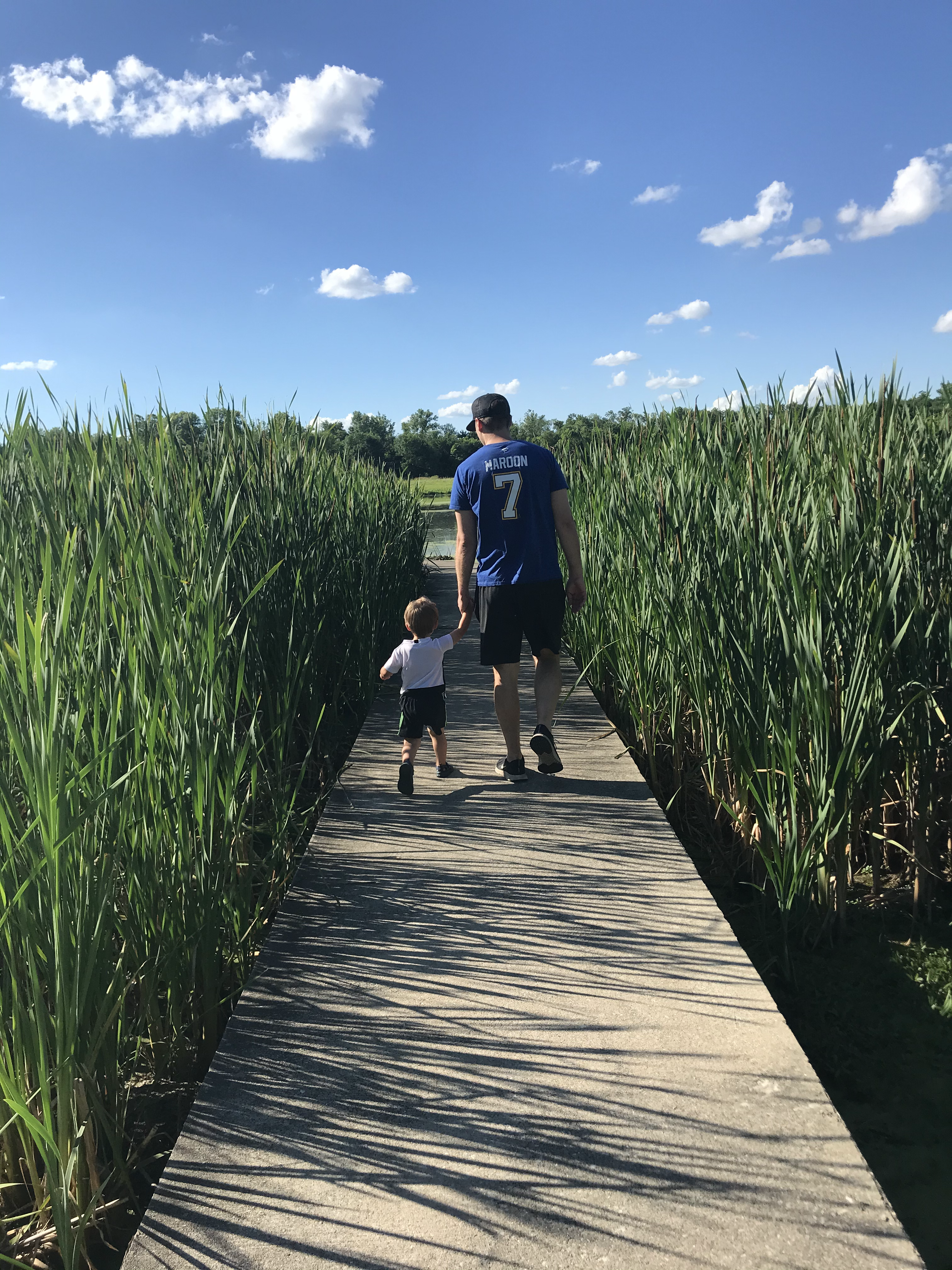 Favorite Parks in Metro East St. Louis- Part One